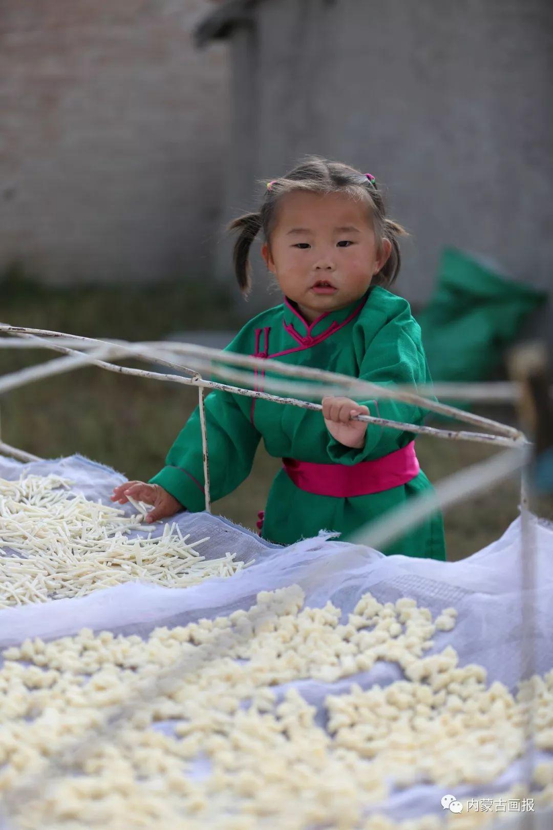奶食里的蒙古族文化 第13张