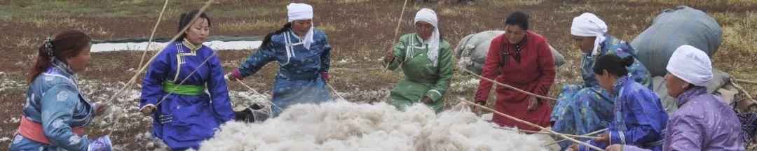 奶食里的蒙古族文化 第15张