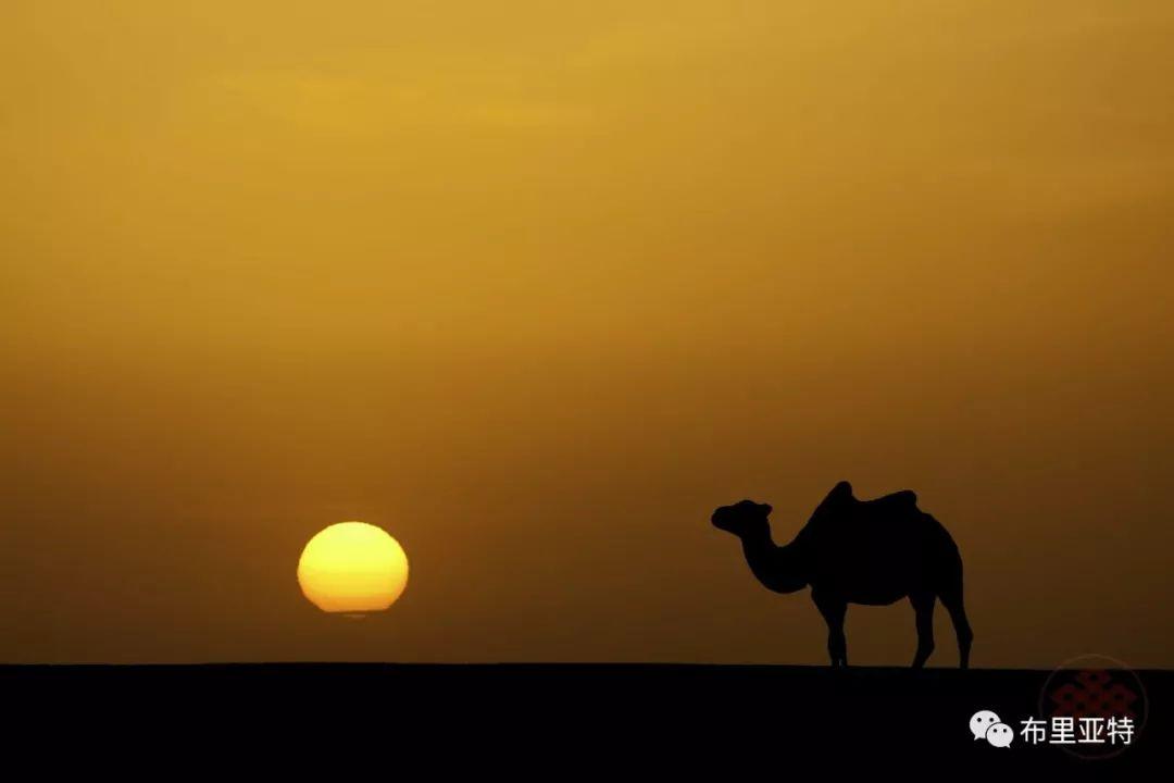 旅行摄影师甘乌力吉的摄影作品欣赏,太震撼! 第7张