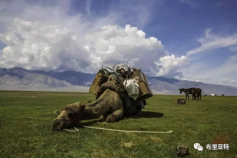 旅行摄影师甘乌力吉的摄影作品欣赏,太震撼! 第65张