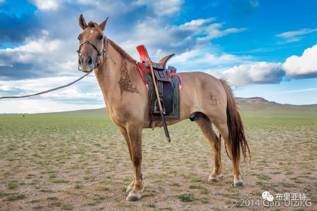旅行摄影师甘乌力吉的摄影作品欣赏,太震撼! 第70张
