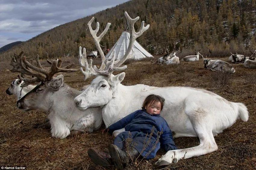 【游牧印象】浪漫与艰辛:一个你不曾了解的蒙古 第9张