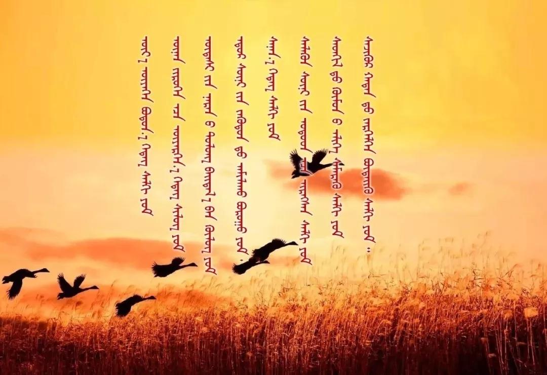 ◈ 蒙古歌词100首(第6部) 第28张