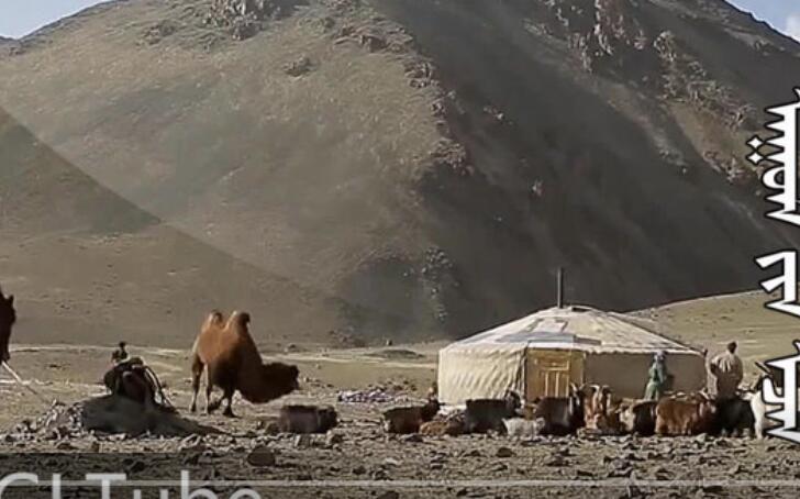 蒙古电影《山的主人》 第1张