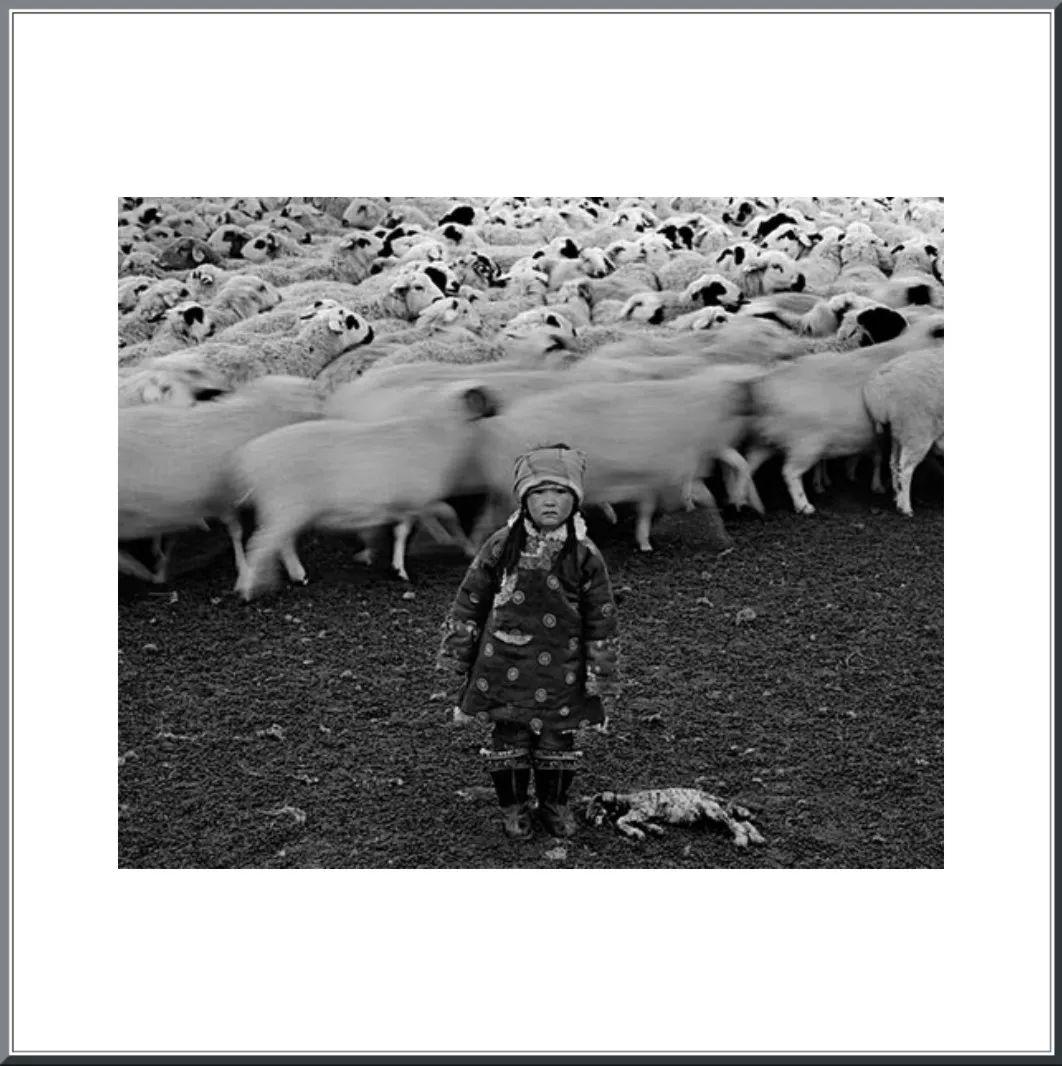 摄影家阿音凭借作品《布里亚特蒙古人》  摘得第九届人像摄影十杰桂冠 第17张