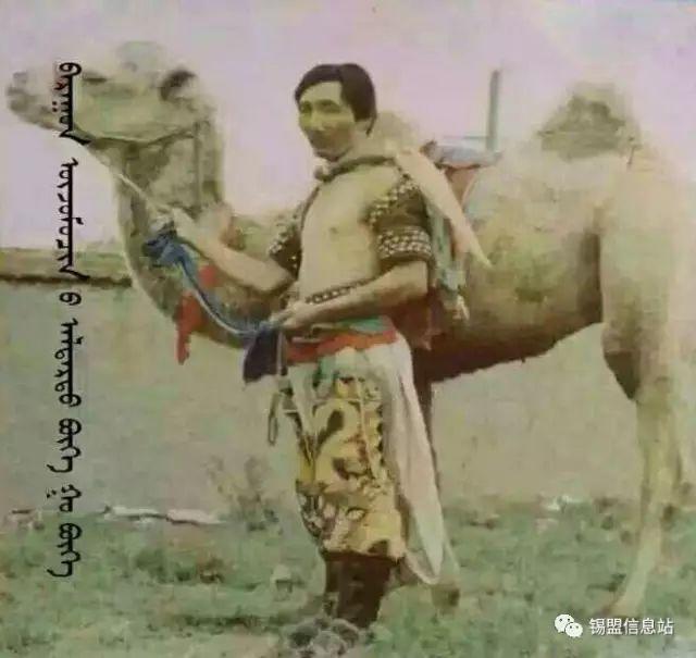 【蒙古图片】搏克老照片…… 第6张