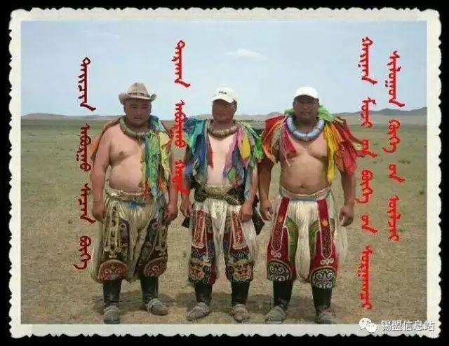 【蒙古图片】搏克老照片…… 第21张