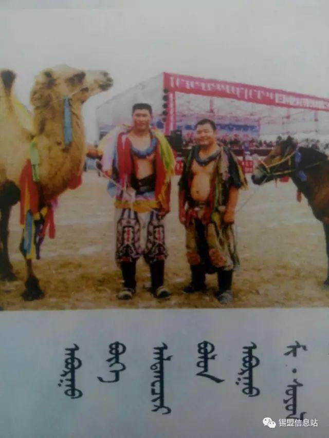 【蒙古图片】搏克老照片…… 第60张