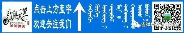 """【敬观文化】拒绝刻板印象:""""蒙古人都很能喝""""""""蒙古人不可能不喝酒"""" 第1张"""