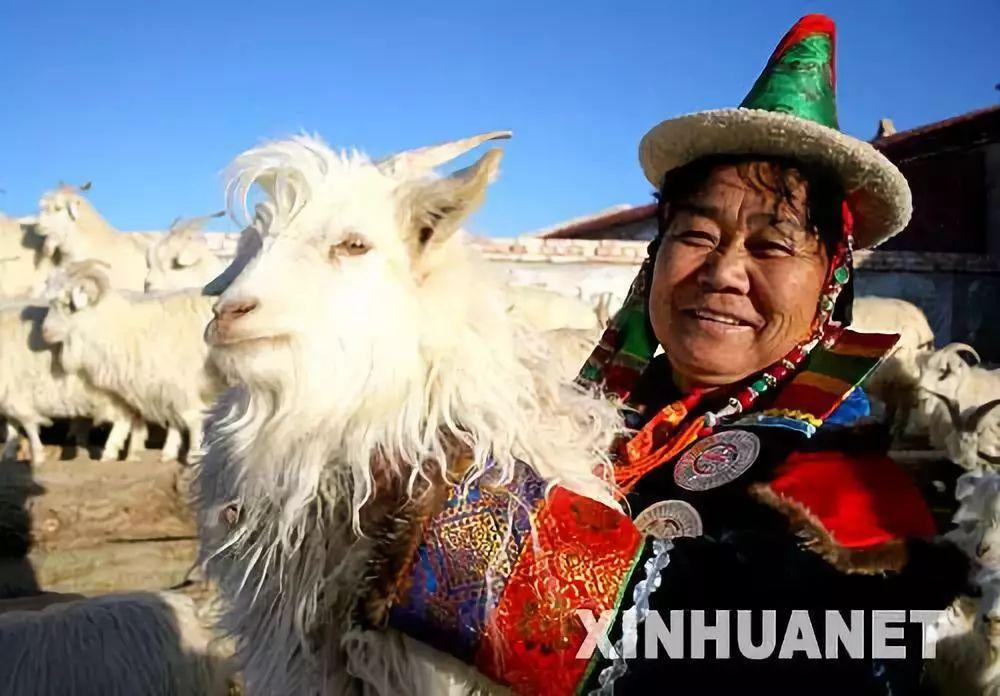 【蒙古历史】世上最全的世界各地蒙古人以及行政区域 第14张 【蒙古历史】世上最全的世界各地蒙古人以及行政区域 蒙古文化