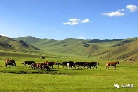 乌云毕力格:关于《阿萨喇克其史》作者的若干问题 第8张 乌云毕力格:关于《阿萨喇克其史》作者的若干问题 蒙古文化