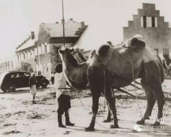 俄罗斯卡尔梅克蒙古怀旧照片 第76张