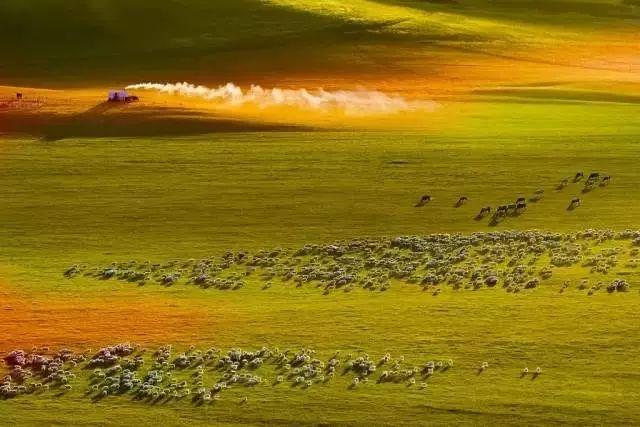 奔腾吧内蒙古!1500G素材,3万多张照片,这部历时一年拍摄的短片震撼了所有人 第23张