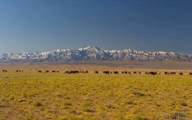 让人叹为观止的蒙古风景... 第7张