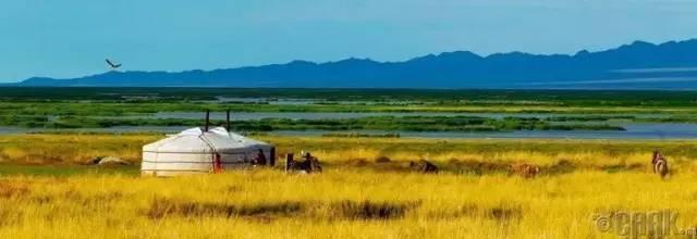 让人叹为观止的蒙古风景... 第11张