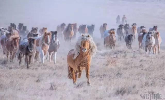 让人叹为观止的蒙古风景... 第10张