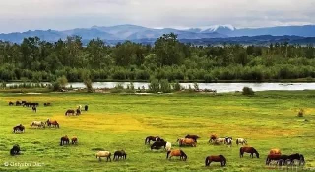 让人叹为观止的蒙古风景... 第12张