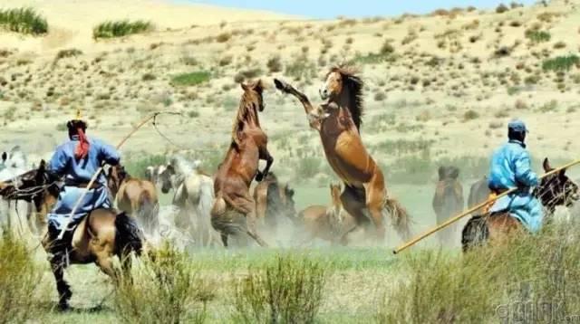 让人叹为观止的蒙古风景... 第14张