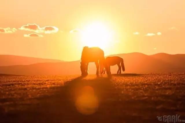 让人叹为观止的蒙古风景... 第20张