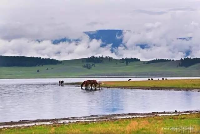 让人叹为观止的蒙古风景... 第25张