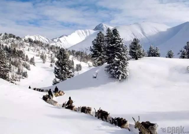 让人叹为观止的蒙古风景... 第44张