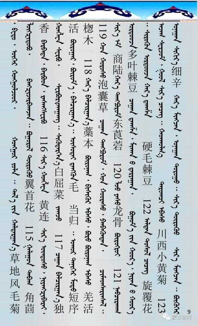 蒙古药材的蒙古、藏、汉译名称对照 第10张