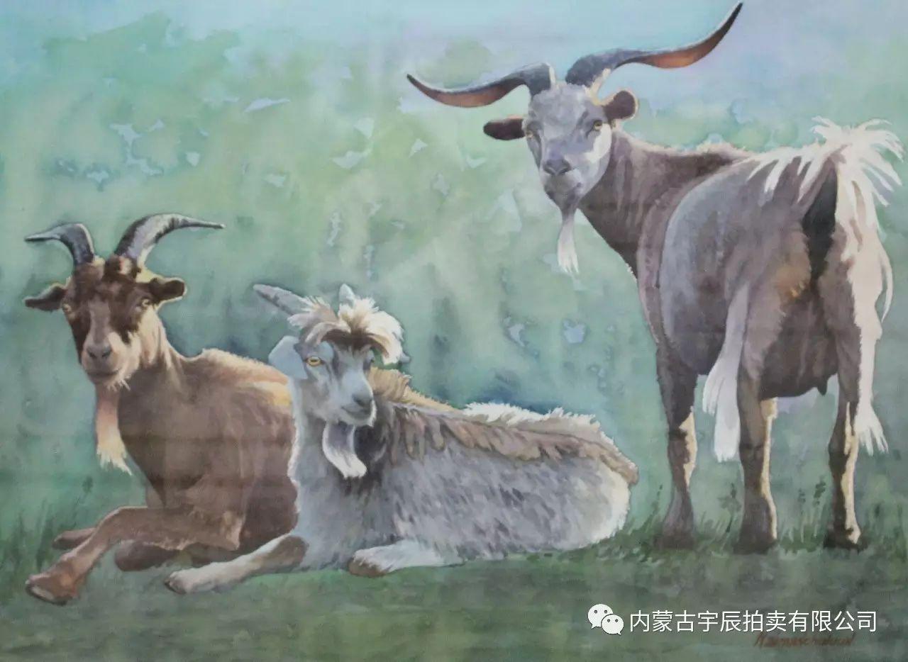 美丽盛开的原野——蒙古国作品赏析(二) 第11张 美丽盛开的原野——蒙古国作品赏析(二) 蒙古画廊