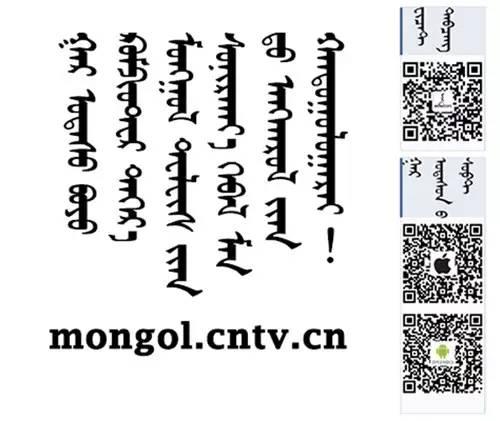 【CNTV采访】蒙古国作家巴 · 巴嘎苏图(蒙古文) 第14张