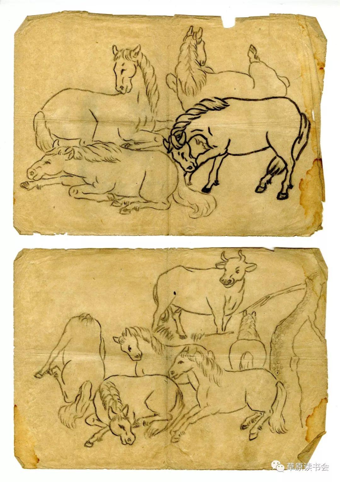 博彦和什克与他的蒙古族图案艺术 第20张 博彦和什克与他的蒙古族图案艺术 蒙古图案