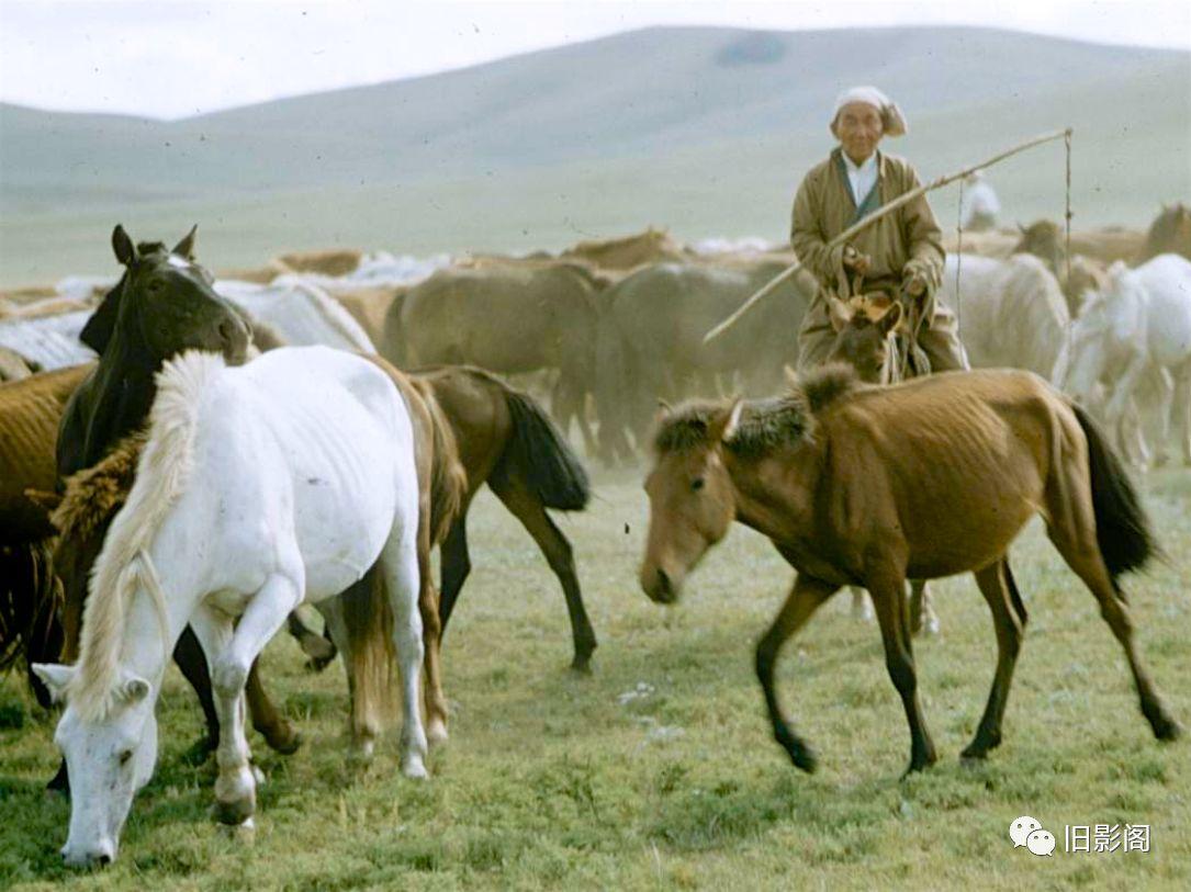 世界上人口密度最小的国家 五十年代初的蒙古 第3张 世界上人口密度最小的国家 五十年代初的蒙古 蒙古文化
