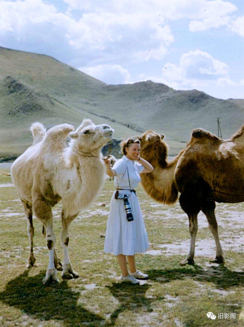 世界上人口密度最小的国家 五十年代初的蒙古 第5张 世界上人口密度最小的国家 五十年代初的蒙古 蒙古文化