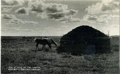 蒙古风俗  (民国日本明信片) 第9张