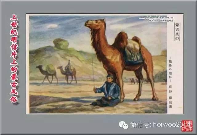 上世纪日本明信片上的蒙古风俗 第11张