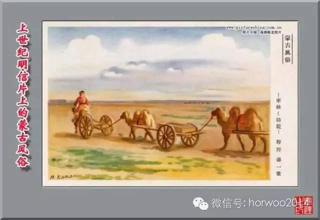 上世纪日本明信片上的蒙古风俗 第19张