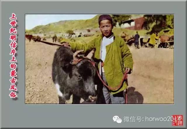 上世纪日本明信片上的蒙古风俗 第24张