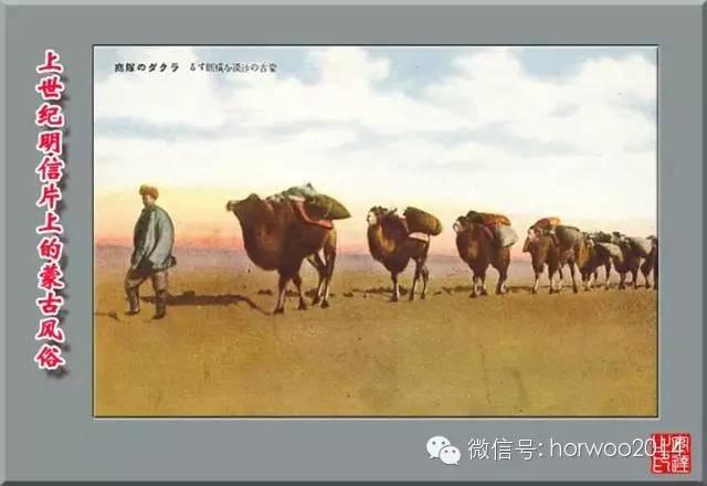 上世纪日本明信片上的蒙古风俗 第29张