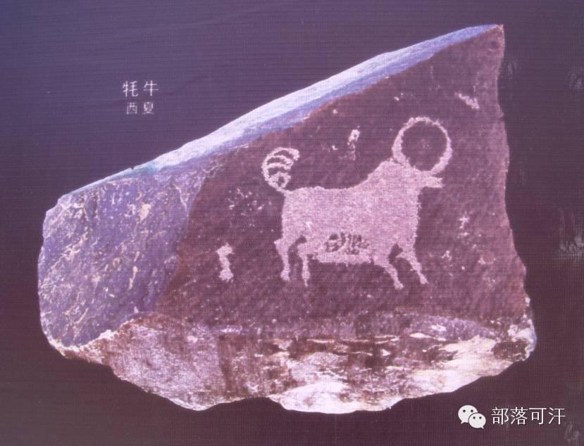 内蒙古出土的历史文物部分图片资料 第31张