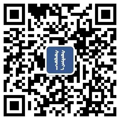 DOMOG蒙古时装绝美秋冬款系列,美出新高度! 第2张