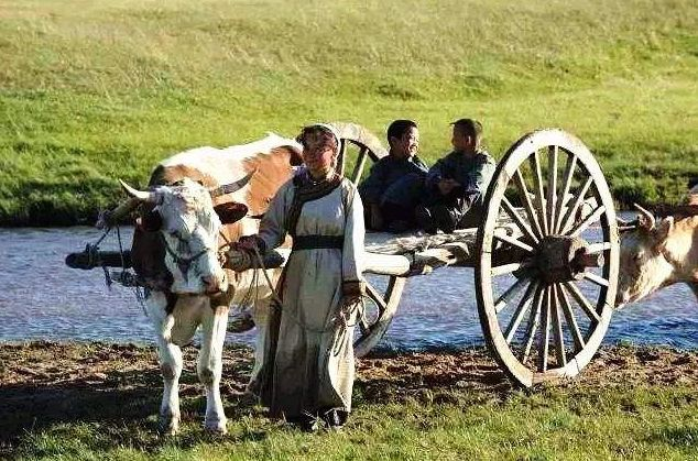 一首好听又催泪的蒙古歌曲《天边的额吉》,听完的人都泪奔了... 第4张