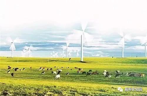 内蒙古各地地名的由来,都很有文化底蕴! 第11张