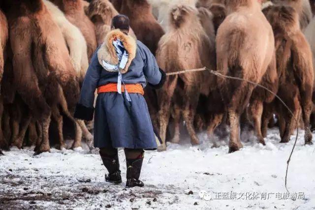 冰雪察哈尔丨察哈尔服饰的魅力 第10张
