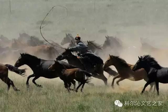【本土佳作】从科尔沁到达尔罕/苏日塔拉图/(总第40期) 第2张