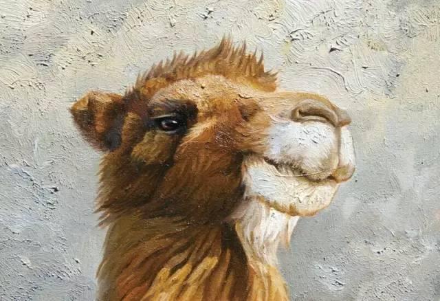艺术家恩和:与骆驼的不解情缘 第22张