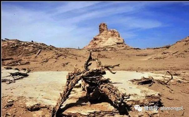罗布泊地区蒙古后裔略记 第8张 罗布泊地区蒙古后裔略记 蒙古文化