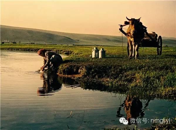 内蒙古摄影家—宝音摄影作品  情系草原 第3张