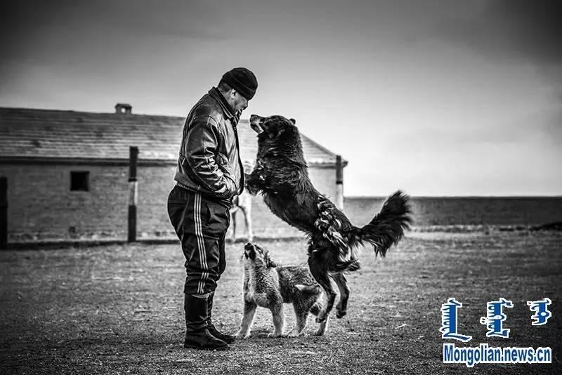 【音频·图片】蒙古族青年摄影家宝日玛个人摄影展 第6张 【音频·图片】蒙古族青年摄影家宝日玛个人摄影展 蒙古文化