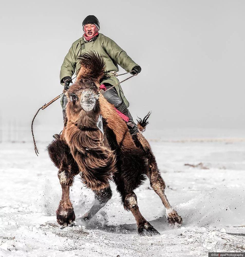 蒙古摄影师巴特扎亚摄影作品欣赏 第9张 蒙古摄影师巴特扎亚摄影作品欣赏 蒙古文化
