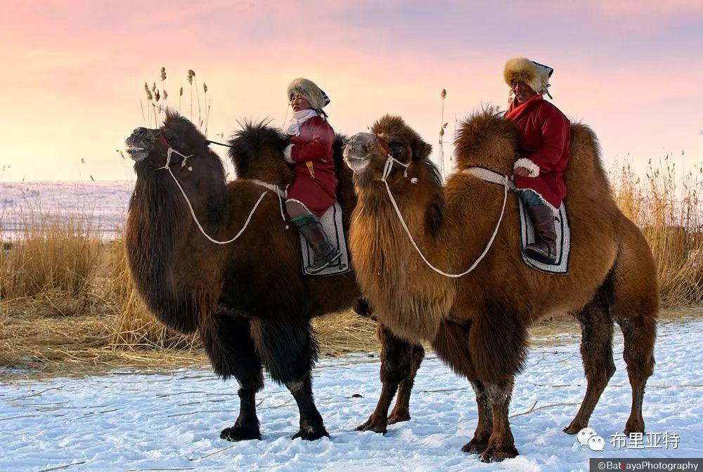 蒙古摄影师巴特扎亚摄影作品欣赏 第11张 蒙古摄影师巴特扎亚摄影作品欣赏 蒙古文化