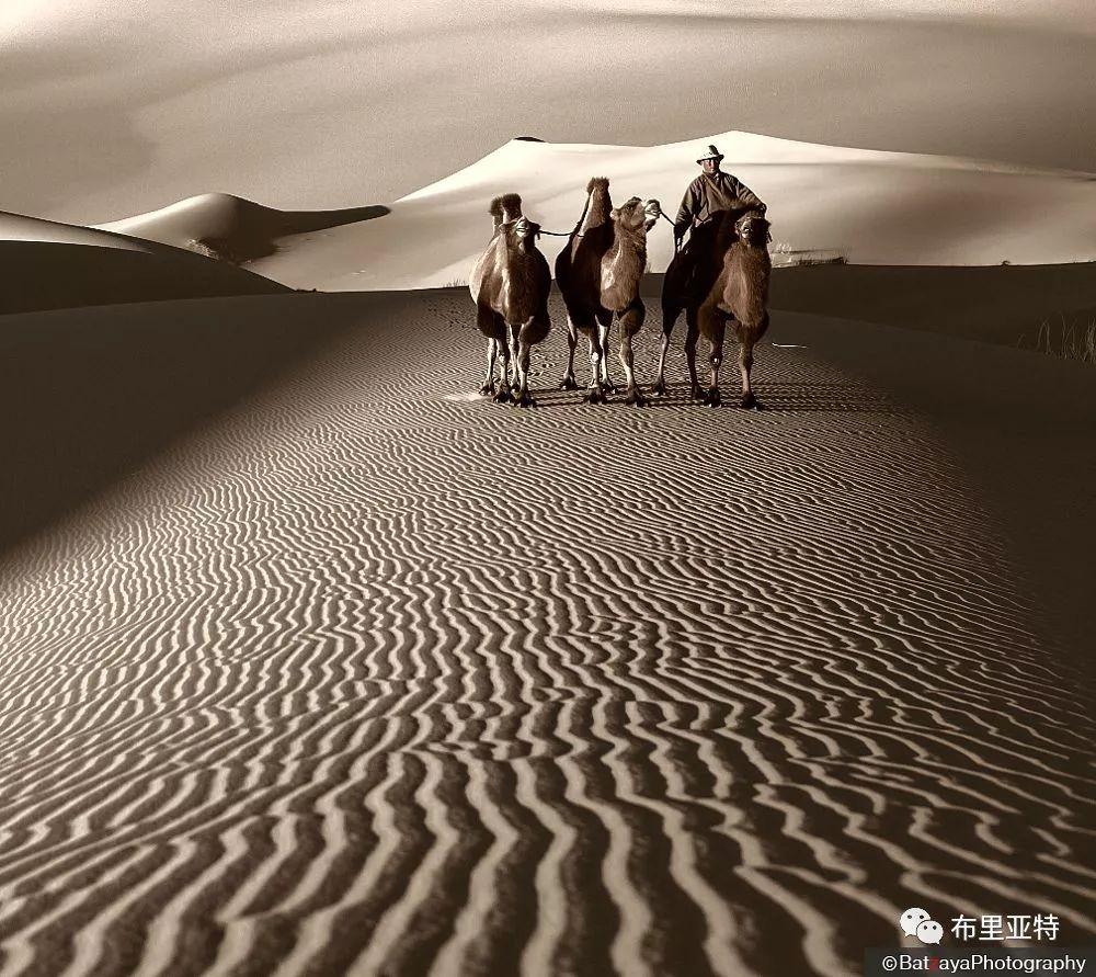蒙古摄影师巴特扎亚摄影作品欣赏 第13张 蒙古摄影师巴特扎亚摄影作品欣赏 蒙古文化