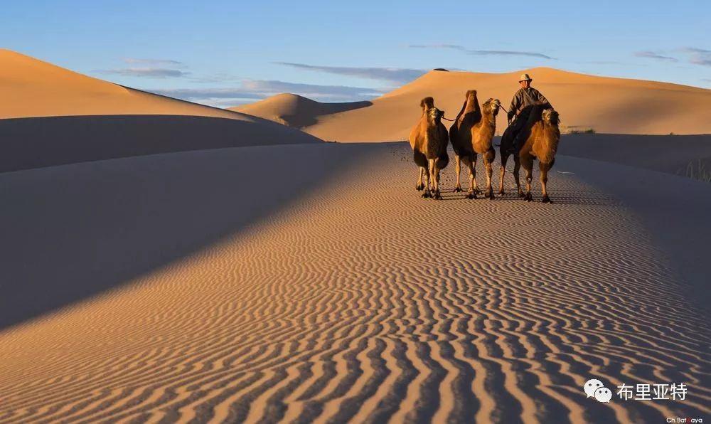 蒙古摄影师巴特扎亚摄影作品欣赏 第15张 蒙古摄影师巴特扎亚摄影作品欣赏 蒙古文化